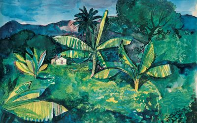 'Pallant Goes Jungle' – throughout July and August